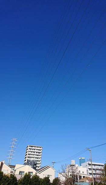 元旦の青い空