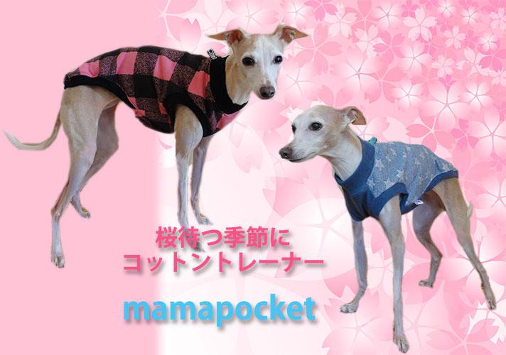 桜待つ季節に、コットントレーナー イタグレの服