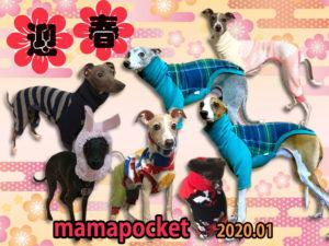 2020年 イタグレの服ママポケット 新年ご挨拶