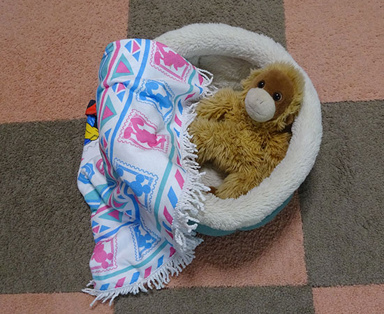 ふかふかベッドとお気に入りのウータン
