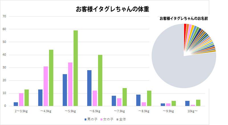 イタグレの体重 データ集計