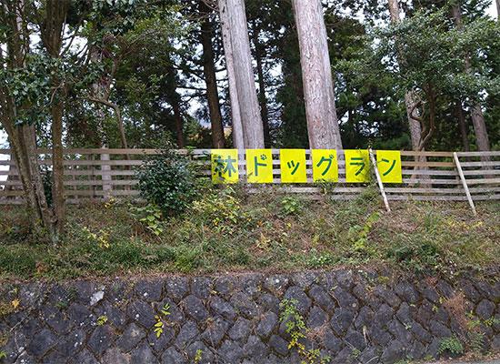 箱根ルチア 宿泊者専用 屋外ドッグラン