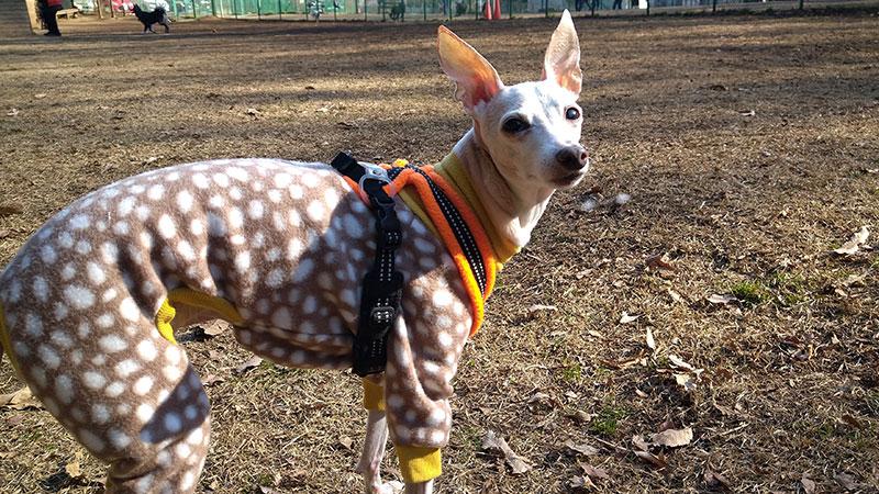 バンビ柄フリースロンパース イタグレの服