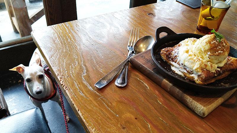 犬OKレストランの激うまアップルパイとイタグレと